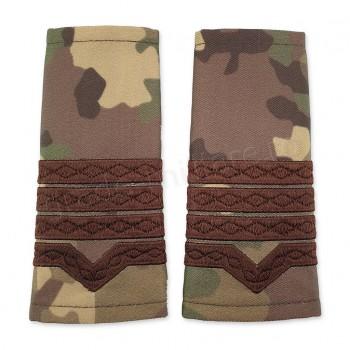 Grade Maistru Militar clasa 2-a combat forte terestre