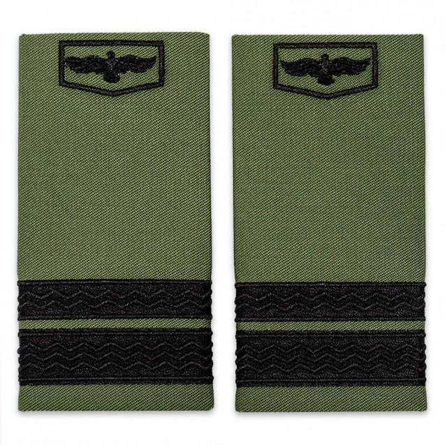 Grade aviatie, grade sergent major aviatie