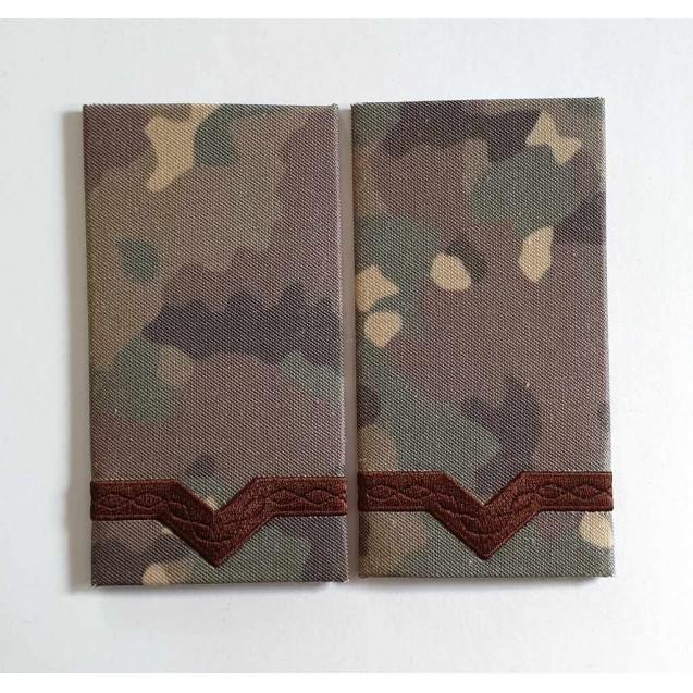 Grade Maistru Militar clasa 5-a combat forte terestre