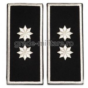 Grade Adjunct Sef (director executiv adjunct) Politia Locala v3