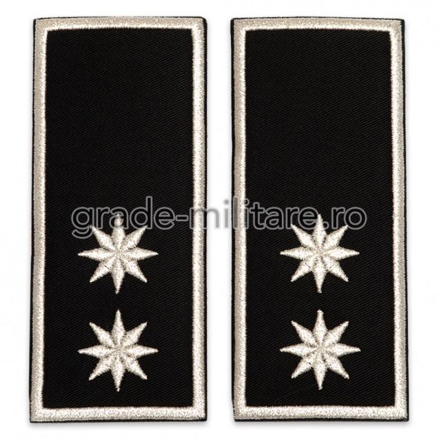 Grade Adjunct Sef (director executiv adjunct) Politia Locala