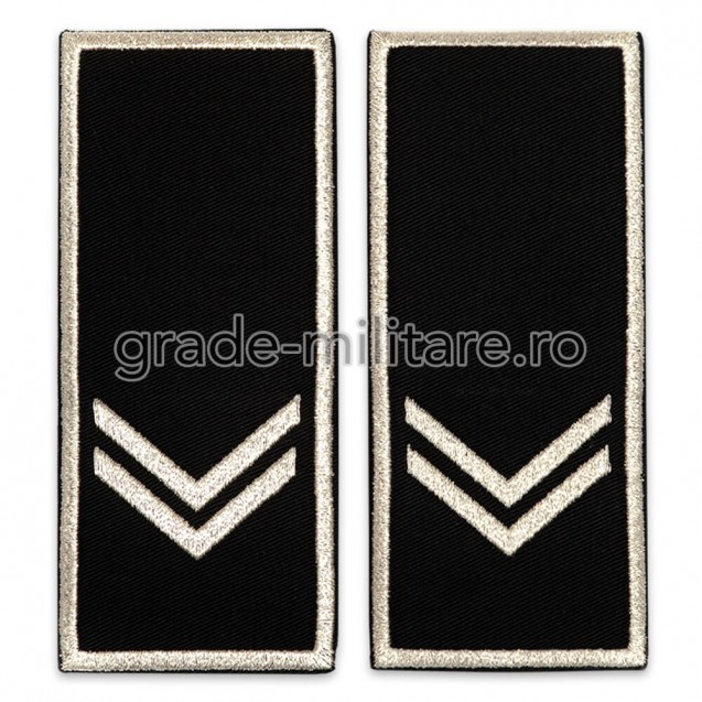 Grade Functionar Public Superior Politia Locala