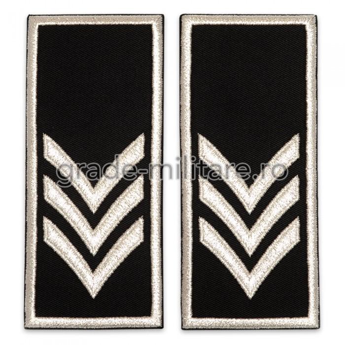 Grade Sef Birou Compartiment Politia Locala v2