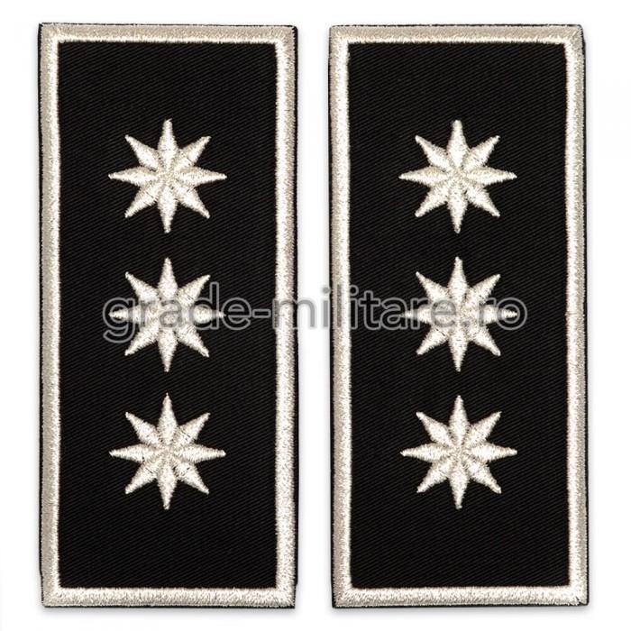 Grade Sef Politia Locala (director executiv) v2