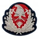 Emblemă coifură generali pompieri