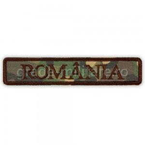Ecuson Romania combat forte terestre