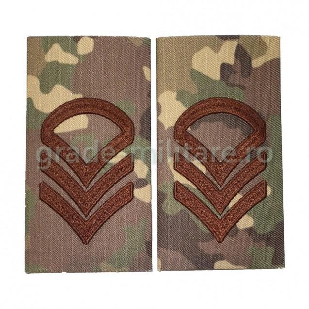 Grade Caporal clasa 1-a combat forte terestre