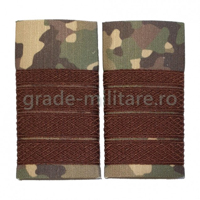 Grade Plutonier adjutant sef combat forte terestre