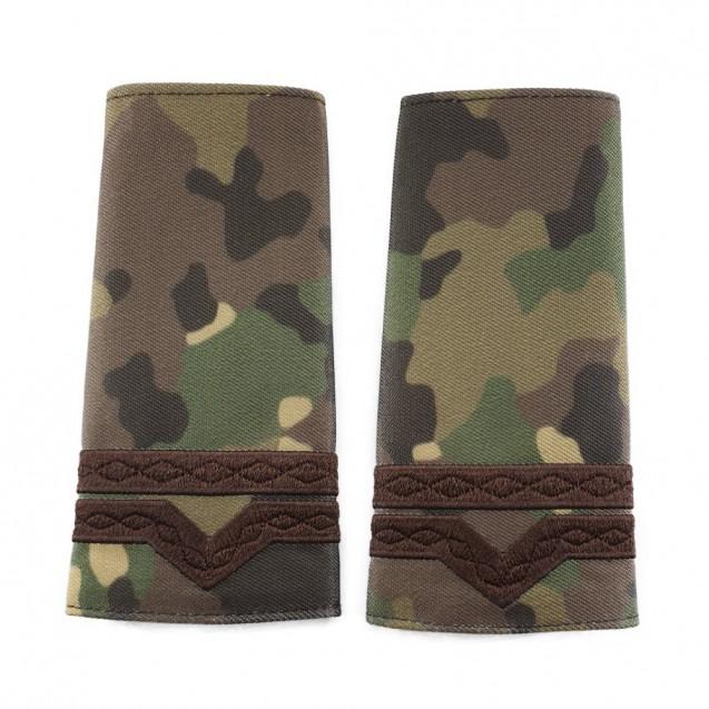 Grade Maistru Militar clasa 4-a combat forte terestre