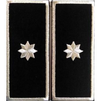 Grade Sef Serviciu Politia Locala v3